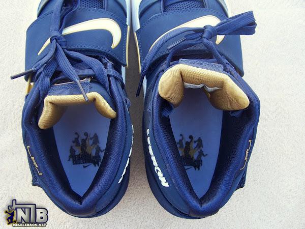 Nike Zoom Soldier I 821707 LeBron James Skills Academy PE