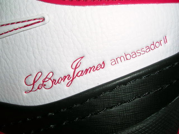 Detailed Look at the Recently Released Nike LBJ Ambassador II