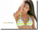 Aruna_Shields_003_1260079599