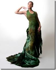 gallery_seaweed