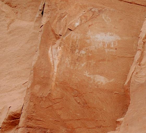 DSC_0189 animals petroglyphs honanki sinagua ruins en az.jpg
