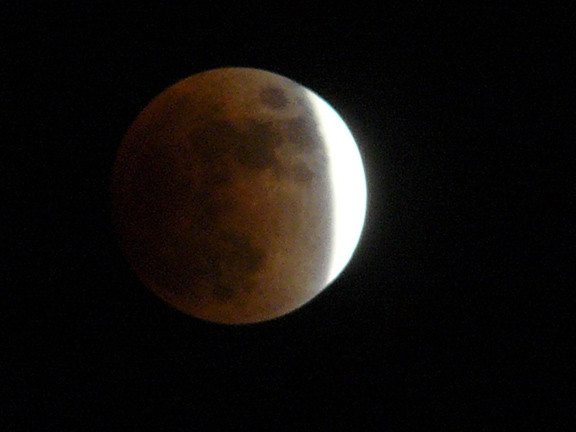 Tricia Speed  lunar eclipse june 26 2010 by tricia speed.jpg