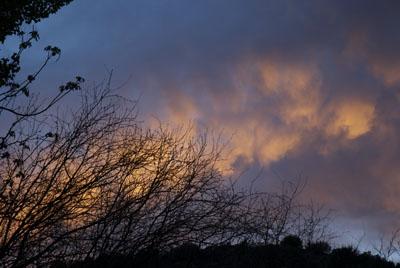 DSC_0002 orange sunset en az.jpg