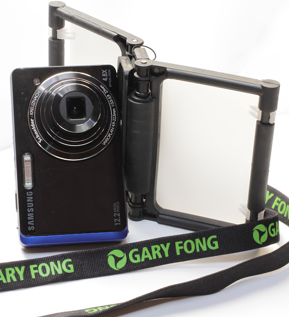 GARY FONG FLIP-CAGE IN VERTICAL POSITION