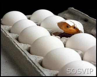 Ovos desenhados (19)