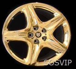 VIP roda
