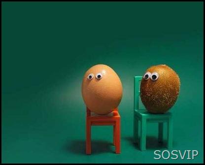 Ovos desenhados (35)