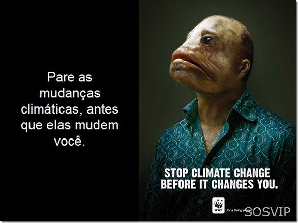 Campanha Publicitaria Conscientizacao (11)