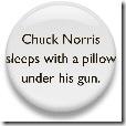 Chuck Norris 7