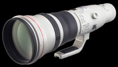 Canon800