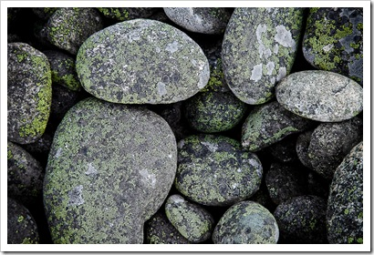 MossOnRocks-091021-4843