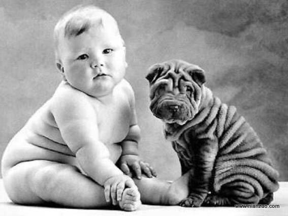 大胖小子 和这小狗天生一对儿,大胖小子,婴儿,沙皮狗