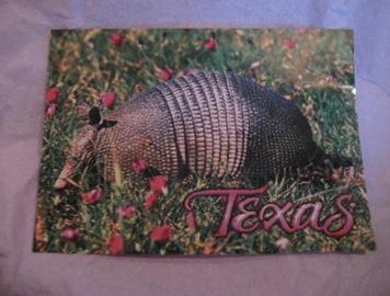 Texas 018