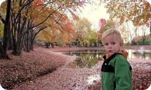 fall days 061