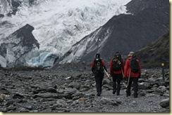 Glaciar Franz Josef (31)