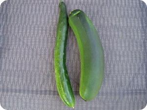 zukecuke