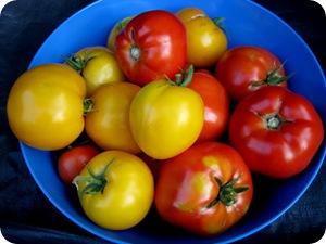 tomatoez