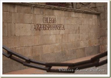 Fonseca_1024x682