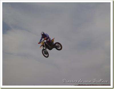 Mx2006-4