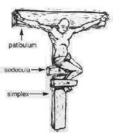 patibulum