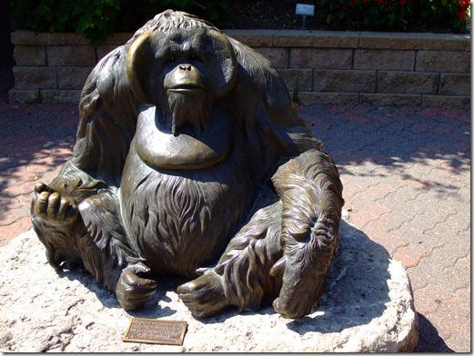 Zoo 099