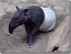 Zoo 153
