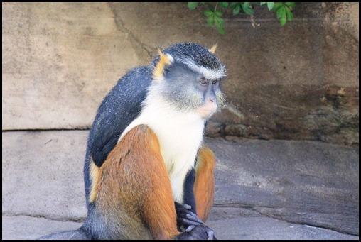 Zoo3-416_thumb