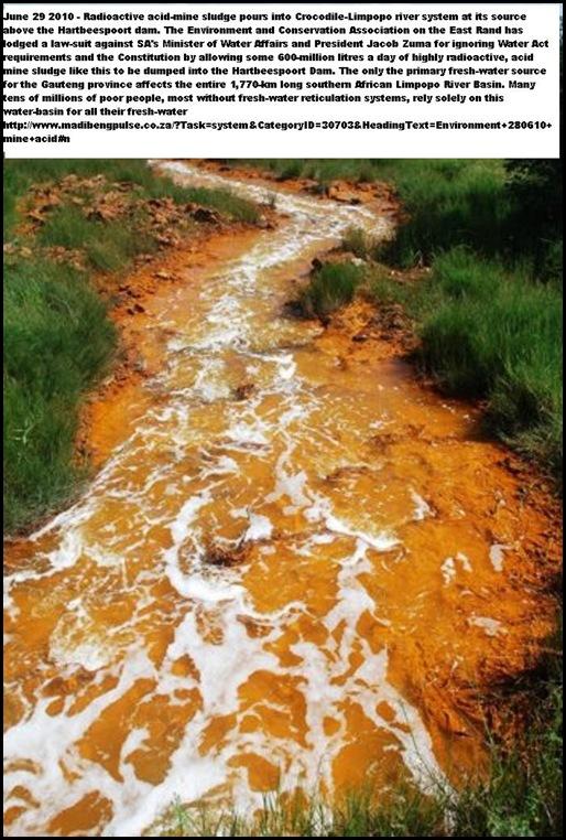Acid Mine Drainage from West Rand Mines Mariette Liefferink Hartbeespoortdam