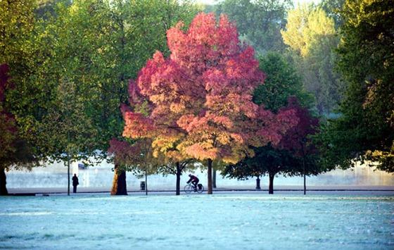 10.10.21 London Frost