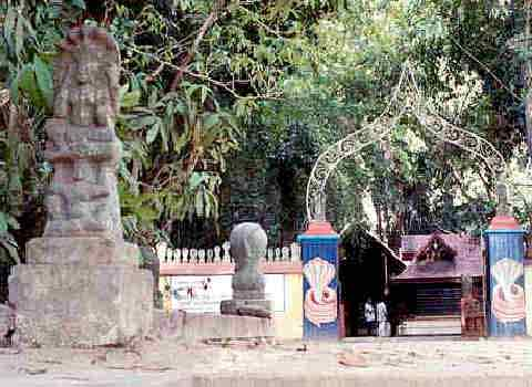 Mannarasala Sree Nagaraja Temple, Kerala