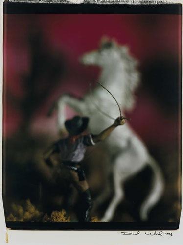 Polaroid david liventhal