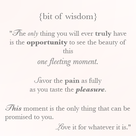 bitofwisdom {bit of wisdom: this moment}