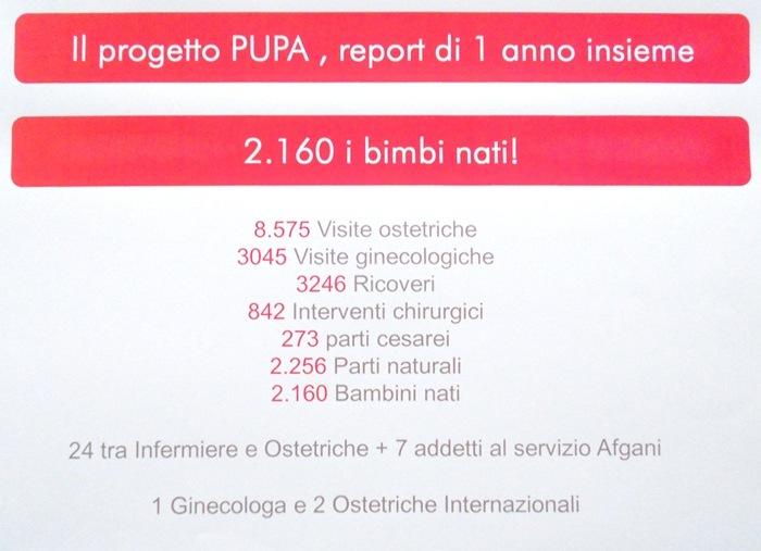 Pupa-Emergency_1