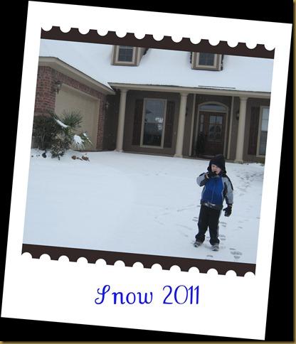 winter 2011 123