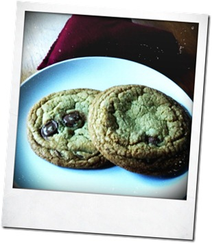 aprilcookies 016
