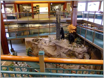 Displays in the Interpretive Center