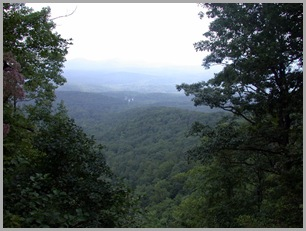 From the Top of Amicalola Falls