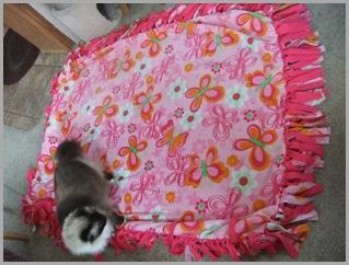 Catia's Blanket
