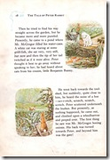peter rabbit_10