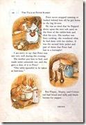 peter rabbit_12