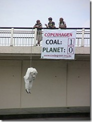 hanging polar bear