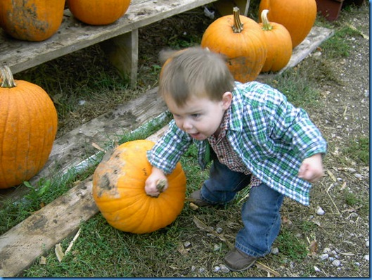 Pumpkin Farm Oct 2009 015