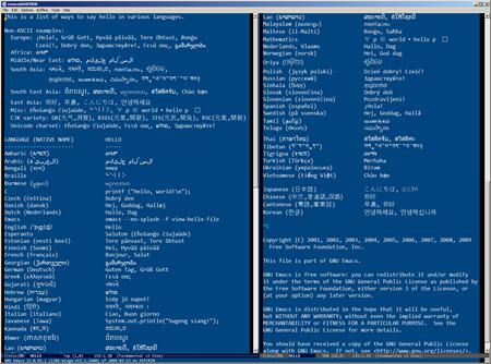 NTEmacs 23.0.91 2009/03/13 HELLO