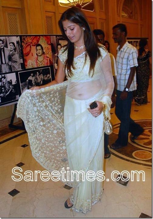 Lakshmi_Rai_Shimmer_Saree-