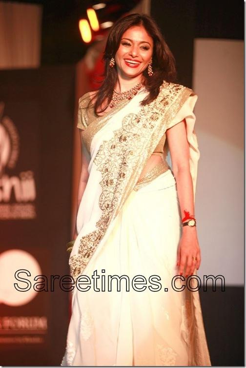 Kalyani_Chawla_Embroidery_Saree