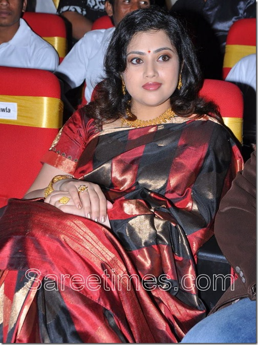 Meena_Traditional_Saree