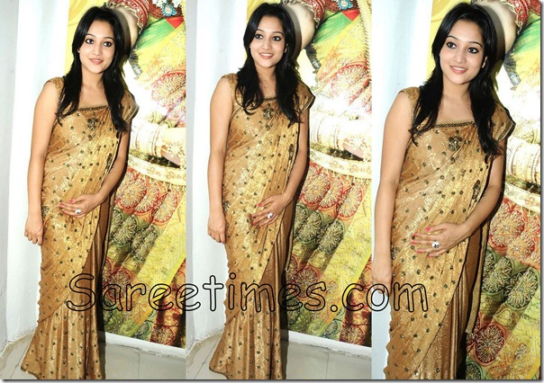 Ritu_Barmecha_Gold_Saree