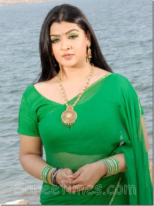 Aarthi_Agarwal_Plain_Saree