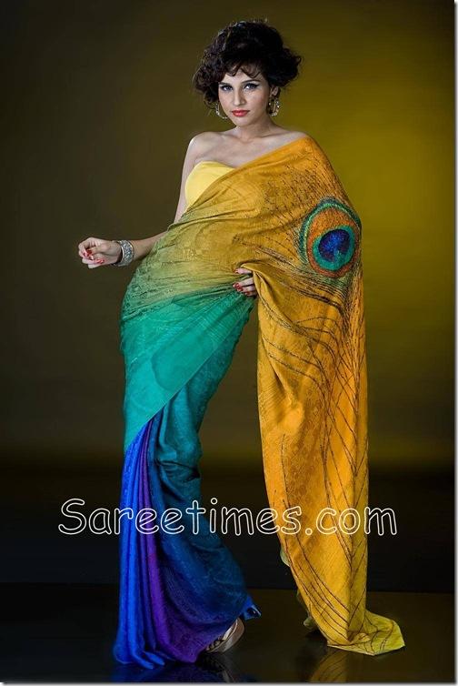 Satyapaul_Peacock_Saree
