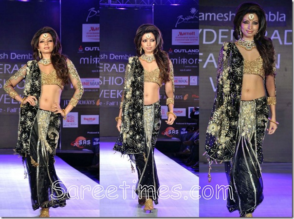 Black_Embroidery_Saree